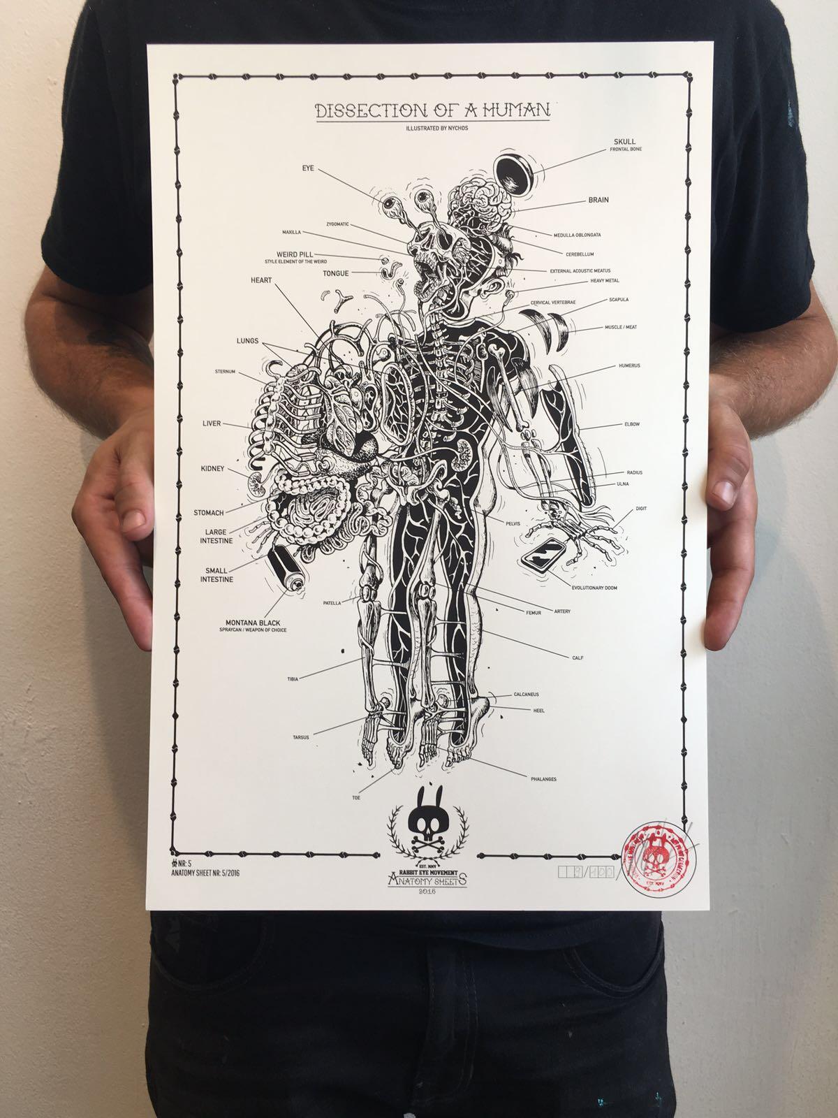 anatomysheet5_03