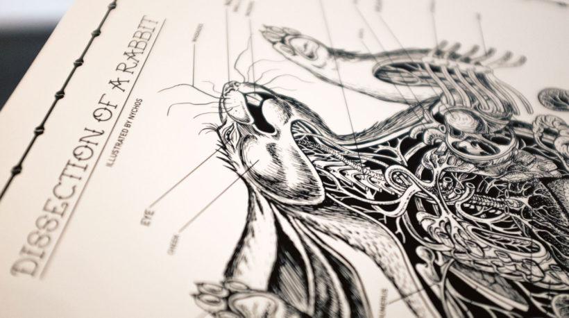 anatomysheet6_07