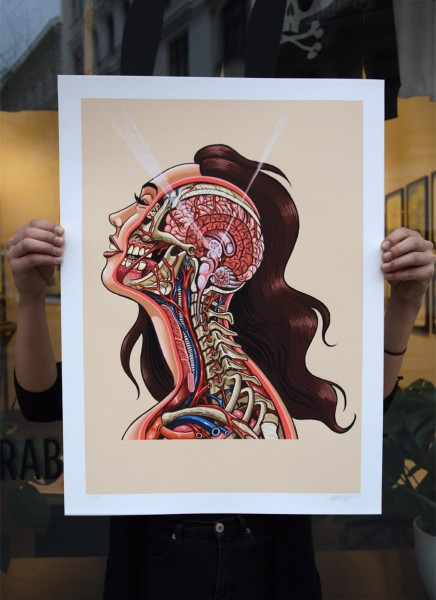 NYCHOS: PINEAL GLAND