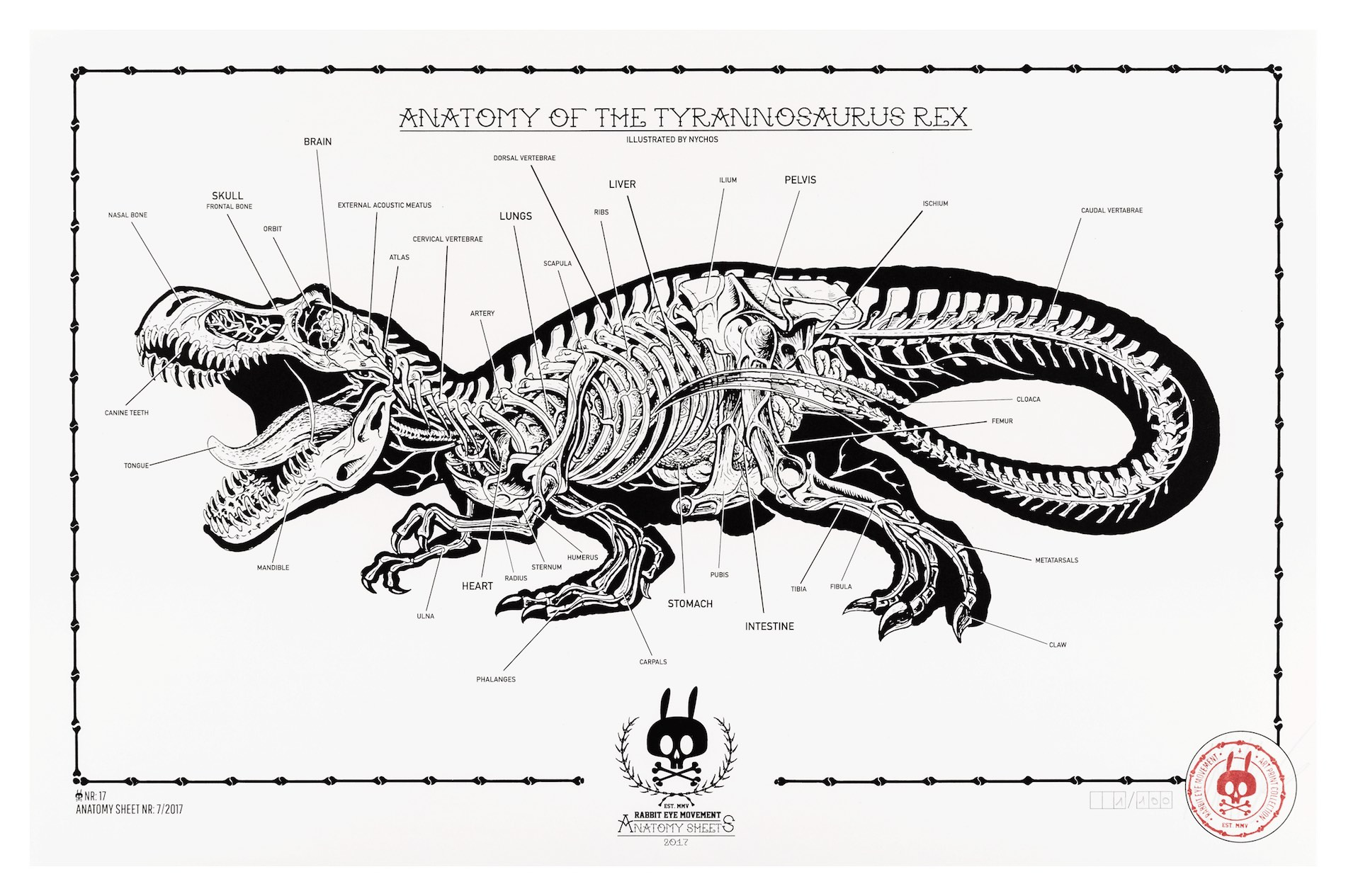 Anatomy Of The Tyrannosaurus Rex Anatomy Sheet No 17 Prints
