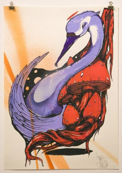 JEROO: Violet Swan