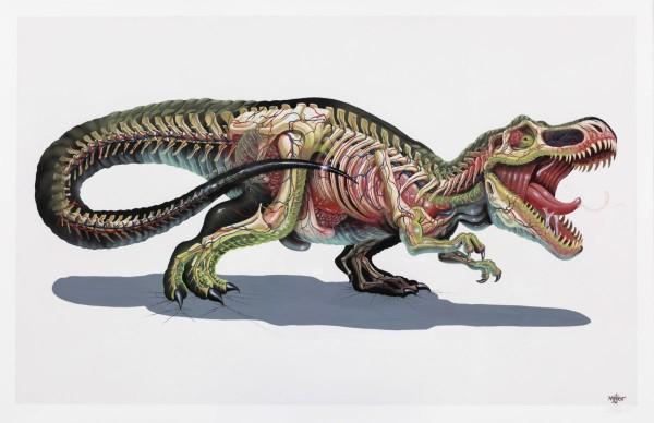 NYCHOS: Translucent Rex